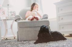 Lifestyle newborn session | Photography by Kati Mallory Photo  Design