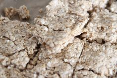 Amber's Doggy Diaries: Tasty Tuesday ~ Peanut Butter Flapjack!