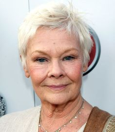 19 Gray Hairstyles & Haircuts - Pictures of Gray Hair on Celebrities......Judi Dench