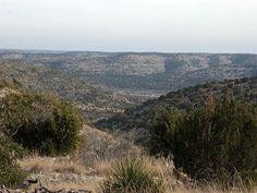 RUGGED HUNTING LAND, EXOTICS IN #TEXAS. #Land For Sale by SAM POORMAN w/ Ranch Enterprises. -LANDFLIP.com