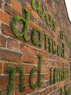 Green Moss Letters over Exposed Brick Wall
