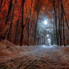 """rosiesdreams: """"Where there is light .. By © Alex Gontav """""""
