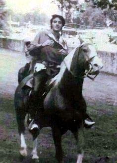 Elvis 321