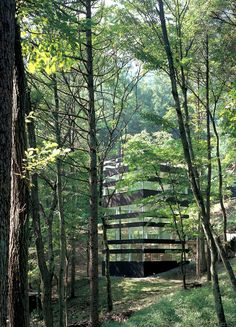 Ring House (2007) in a forest in Nagano / by TNA architects #architecture