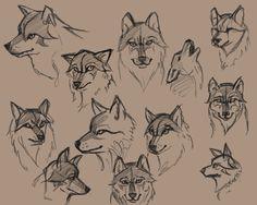 Wolf sketch // cartoonish