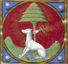 """It's About Time: Dog Days of Summer - Over 40 Dogs of the Middle Ages """"rescued"""" from illuminations, tapestries, & even playing cards. Medieval Life, Medieval Art, Renaissance Art, Illuminated Letters, Illuminated Manuscript, Old Best Friends, Medieval Paintings, Greyhound Art, Illumination Art"""