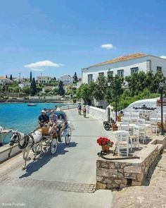 """""""See you in Spetses...""""! - The idyllic island! Spetses was the basis for the island of Phraxos in John Fowles' 1965 novel The Magus. Many locations …"""