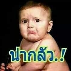 Line Sticker, Funny Kids, Funny Animals, Baby Kids, Memes, Boys, Face, Quotes, Quotations