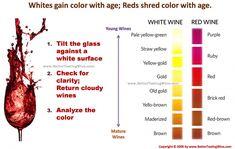 White Wine Basics for Beginners - Taste Of Wine Wine Tasting Party, Wine Parties, White Wine, Red Wine, Barefoot Wine, Riesling Wine, Wine Chart, Wine Baskets, Wine Guide