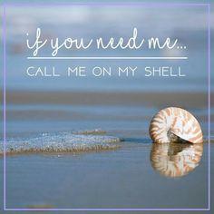 Pastel Sea Shell Necklace Set/Dainty Layered Seashell Necklace Set/Mixed Color Beachy Necklace/Multi Color Layered Necklace w Earrings Beach Bum, Ocean Beach, Summer Beach, Carpe Diem, Sea Quotes, Pomes, Ocean Sounds, I Love The Beach, Beach Signs