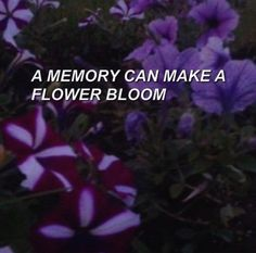immortal // marina and the diamonds