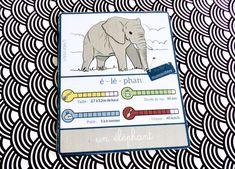carte nomenclature éléphant