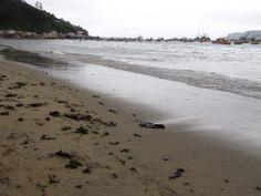 Arena y mar de Tumbes, se pueden ver residuos los cuales poseen diferentes texturas dependiendo de cuales sean los objetos.