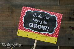 Teacher Appreciation Gifts - Flower Pot - Giggles Galore - Very cool blog! I printed out the really cute free printable! Thanks! :D