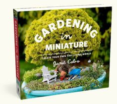 Gardening in Miniature: Create Your Own Tiny Living World by Janit Calvo. Get ready to journey into the huge world of growing small! The next garden trend combines the joy of gardening with the magic of miniatures. Miniature Plants, Miniature Fairy Gardens, Organic Gardening, Gardening Tips, Gardening Books, Fairy Gardening, Gardening Vegetables, Indoor Gardening, Fairies Garden