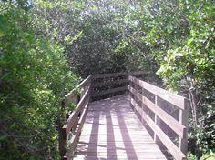 Cocquina Baywalk: Anna Maria Island