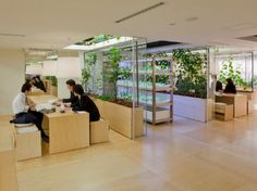Pasona HQ, Kono Designs, vertical garden, urban farm, eco office, living wall, urban farming, green renovation