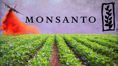 There are a couple breaking stories that I want to make sure you know about… Newly released emails show how Monsanto infiltrated a scientific journal and persuaded them to retract a published study…