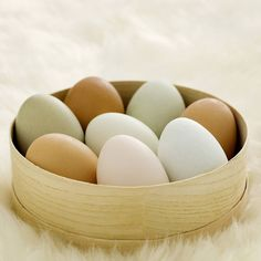 Improve Concentration with Eggs --Eat some eggs before that big exam or long work day! Eggs contain choline in the yolk. Choline helps regulate the brain and nervous system which in turn aids with concentration and memory.  . . #healthcoaching #MetabolicMethodAcademy #MetabolicMethod #healthychoices #healthly #healthybody #nutritional #healthtips #cleaneating #eatclean #healthyeating #healthylifestyle #healthbenefits #healthylifestyles #healthbenefits #hormonal #imbalance #metabolic…