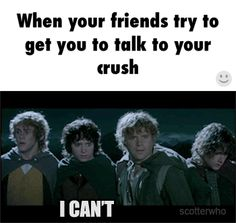 When your friends try to get you to talk to your crush / iFunny :)