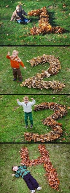 Do this every fall!