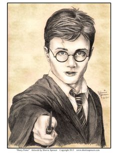 Harry Potter by Sherrie Spencer