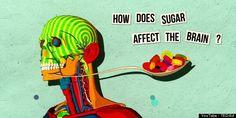 TED talk on how sugar influences the brain