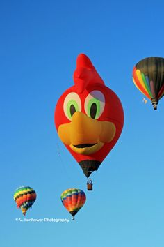 Red Bird Hot Air Balloon by V. Isenhower Photography, via etsy.com