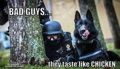 Bad Guys... they taste like chicken. K9