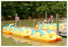 Paddle boats and kayaks at Wannamaker Park Best Inflatable Boat, Boat Storage, Vehicle Storage, Bikes Games, Best Army, Winter Christmas Gifts, Duck Boat, Paddle Boat, Boat Interior