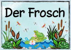"""Ideenreise: Themenplakat """"Der Frosch"""""""
