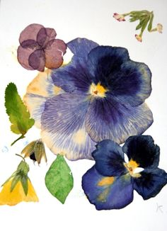 INDIGO Blues ~ The color of intuition, perception & the higher mind