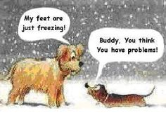 Freezing Cold Cartoon | This made me think of Bella. At least our little princess gets carried ...