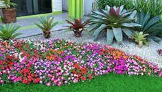 Resultado de imagem para pequenos jardins de entrada