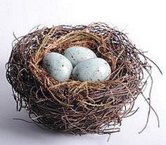 6 Inch Birds Nest with Blue Eggs