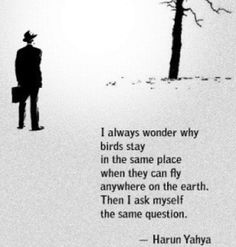 I always wonder why birds stay in the same place when they can fly anywhere on the Earth. Then I ask myself the same question ~  Huran Yahya