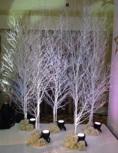 White Birch LED Lighting winter wonderland venue decoration