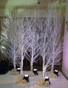 White Birch LED Lighting winter wonderland venue decoration