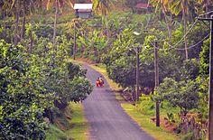 Kids walking to school. Lalomanu, Samoa
