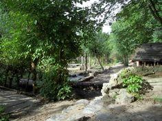 De Speeldernis, een natuurspeeltuin waar je lekker in bomen mag klimmen, met modder mag spelen en nog veel meer.