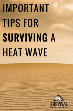 Spring Is Here, Summer Is Near: Important Tips For Surviving A Heat Wave Fireproof Waterproof Safe, Summer Safety Tips, Safe Vault, Spring Is Here, Summer Heat, Natural Disasters, Survival Tips, National Parks, Waves
