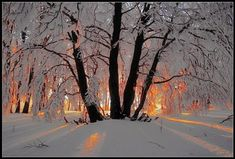 winter scenes pictures | Share your winter scenes (SLR, camera, sunset, great shots) - Digital ...