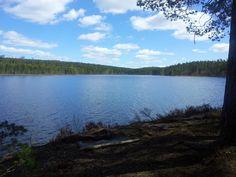 #Mosjøen. #Mosjømarka. #Løten