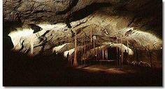 Bayliss Cave - Cave Tours at Undara Experience #ecotourism #Queensland #Australia