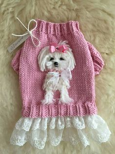 Vintage Pink Sweater with Embroidery Anglaise Frill, Cute Yorkie, Velvet and Button Bow, Beads, Sequins and Rose detail - Salvabrani Dog Grooming Clippers, Dog Grooming Shop, Dog Grooming Business, Knit Dog Sweater, Dog Sweaters, Pink Sweater, Beaded Dog Collar, Collar Choker, Crochet Dog Clothes