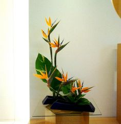 5 flower placement, higlignting bird of paradise form, with leaves anchoring arrangement.  Parallel containers also key to composition and spacing.
