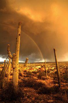 """Monsoon Rainbow - Tucson, Arizona"" a eerily beautiful site! Beautiful Sunset, Beautiful Places, Amazing Places, Beautiful Pictures, Tucson Arizona, Arizona Usa, Arizona Travel, Phoenix Arizona, Desert Life"