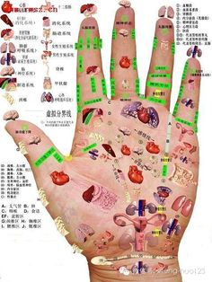 Les points d'acupuncture Massage Therapy Certification, Remedies For Bee Stings, Acupressure Therapy, Reflexology Massage, Chinese Medicine, Chinese Herbs, Health Matters, Health And Beauty, Health Tips