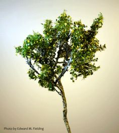 "This looks like a great idea rather than purchasing expensive ""pre-made"" trees at the hobby store."