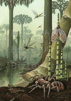 1119+Insects+of+the+Carboniferous